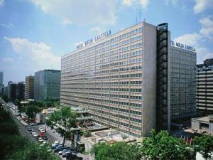Apathotel (condo-hotel) Meliá Castilla en Madid